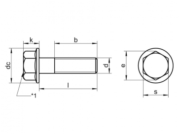 Metric Coarse Flange Bolt Stainless-Steel-A2 DIN6921