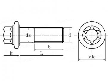 Metric Coarse External Torx Bolt with Flange Grade-10.9 DIN34800