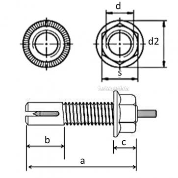 Molabolt Peg Anchor Blind Fastener 8.8 zinc plated or Stainless Steel