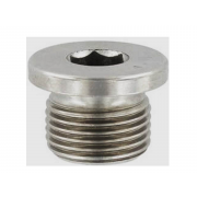 Inch Socket Round Head Parallel Pipe Plugs Steel DIN908G