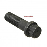 Metric Coarse 12 Point Flange Head Bolt Grade-10.9 DIN65438