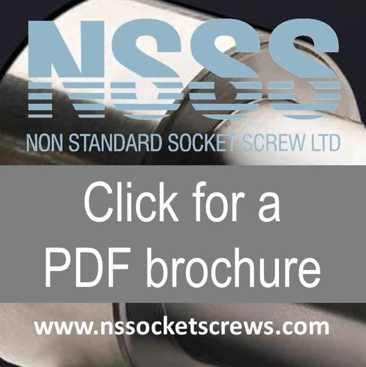 nsss brochure